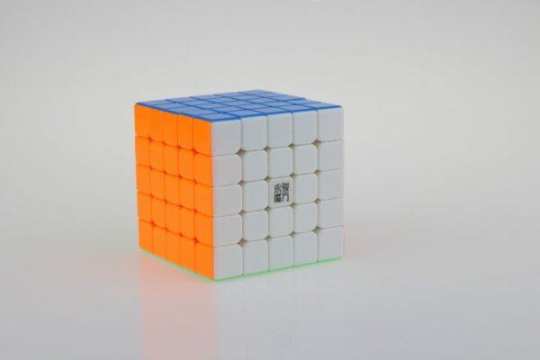 IMG 9419